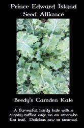 beedys-camden-kale