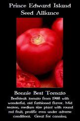 bonnie-best-tomato