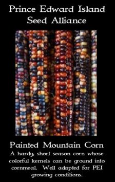 corn painted mountain