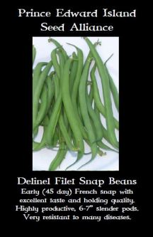 delinel-bean