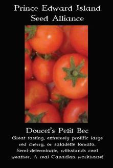 doucets-petit-bec-tomato