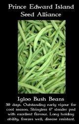 igloo-bush-beans