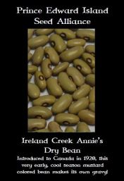 ireland-creek-annies-dry-bean