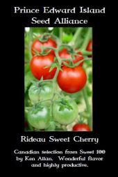 rideau-sweet-cherry