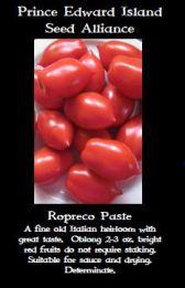 ropreco-tomato