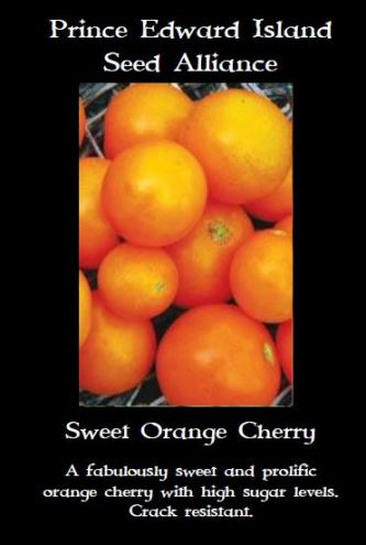 sweet-orange-cheery