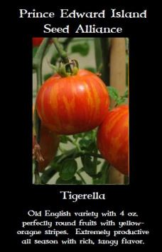 tigerella