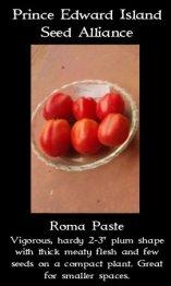 tomato-roma-paste