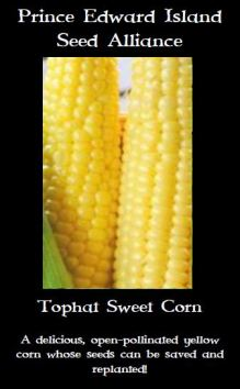tophat-sweet-corn